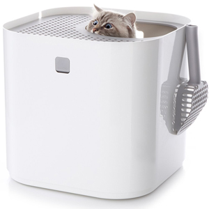 The iPod of Litter Boxes: A Review of the Modkat Litter Box